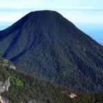 Keindahan Alam dan Keanekaragaman Ekosistem di Gunung Gede Pangrango