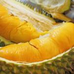 Durian Rancamaya, Meskipun Ukurannya yang Kecil Namun Durian Ini Memiliki Rasa yang Legit