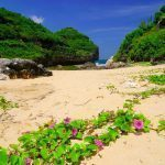 Gunungkidul dengan Keindahan Alamnya Berupa Pantai – Pantai yang Tersembunyi