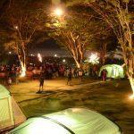 Tiga Lokasi Wisata Glamping Place yang Cocok Untuk Mengisi Liburan Kamu Bersama Keluarga