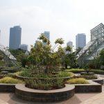 Lima Taman Kota di Jakarta yang Bisa Dijadikan Sebagai Lokasi Wisata Akhir Pekan