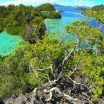 Menelisik Keindahan Pulau Bokori dan Pulau Labengki di Sulawesi Tenggara