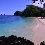 Spot Menarik Untuk Menyelam di Kawasan Pantai Tiga Warna Malang